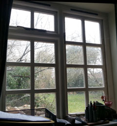 A cold, windy garden, seen from a warm study