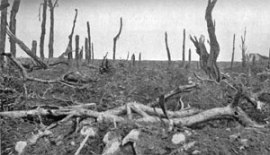 A scene at Pozieres during the Battle of the Somme